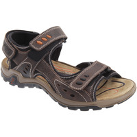 Zapatos Hombre Sandalias de deporte Imac  Marrón