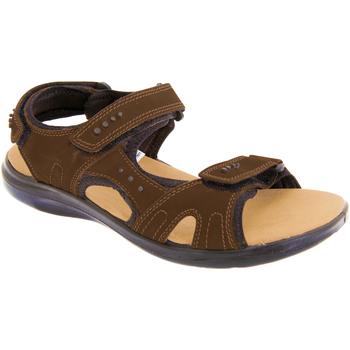 Zapatos Hombre Sandalias de deporte Roamers  Marrón