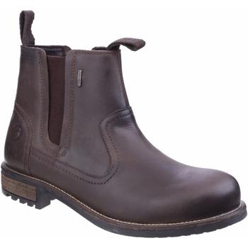Zapatos Hombre Botas de caña baja Cotswold Worcester Marrón