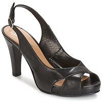 Zapatos Mujer Sandalias Betty London LIMONADE Negro