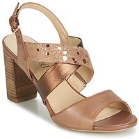 Zapatos Mujer Sandalias Caprice BOLAO Marrón