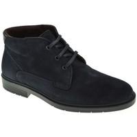 Zapatos Hombre Botas de caña baja Ricardo Hernandez 4926 azul