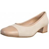 Zapatos Hombre Richelieu Argenta 21607 Beige
