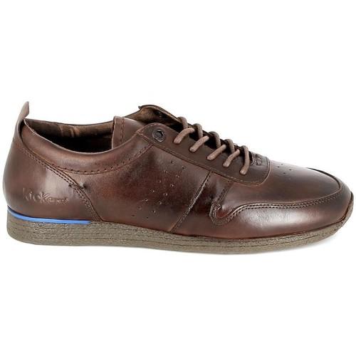 Zapatos Hombre Derbie Kickers Olympei Marron Marrón