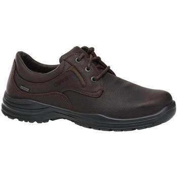 Zapatos Zapatos de trabajo Chiruca Zapatos  Rochelle 02 Goretex Marrón