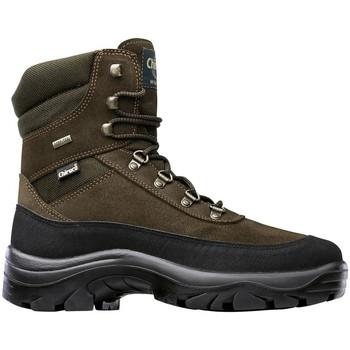 Zapatos Senderismo Chiruca Botas  Torcaz 15 (Bandeleta) Goretex Verde