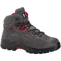 Zapatos Senderismo Chiruca Botas  Mulhacen 19 Gore-Tex Gris