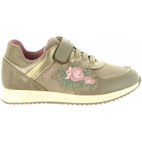 Zapatos Niña Zapatillas bajas Geox J846FB 0AU54 J JENSEA Beige