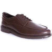 Zapatos Hombre Zapatos de trabajo 24 Hrs 10250 Marrón