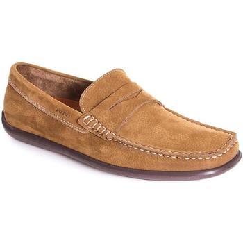 Zapatos Hombre Mocasín Frau 14E2 Beige