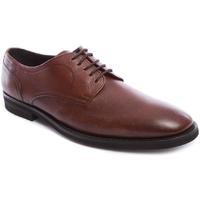 Zapatos Hombre Richelieu Frau 33P1 Marrón