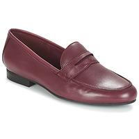 Zapatos Mujer Mocasín André TIM Burdeo