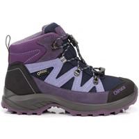 Zapatos Niños Botas Chiruca Botas  Troll 06 Gore-Tex Violeta