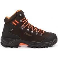 Zapatos Botas Chiruca Botas  Berrea Force Hi Vi 18 Gore-Tex Marrón