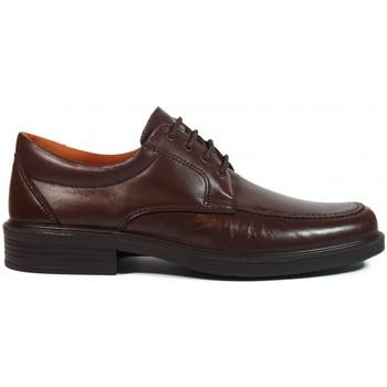 Zapatos Hombre Derbie Luisetti ZAPATOS  0103 MARRÓN Marrón