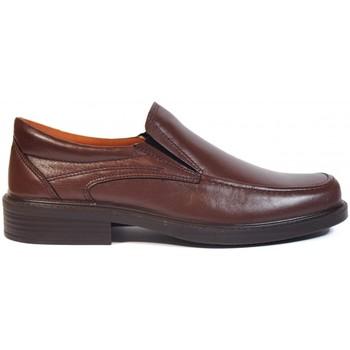 Zapatos Hombre Mocasín Luisetti ZAPATOS  0106 MARRÓN Marrón