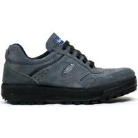 Zapatos Hombre Zapatillas bajas Segarra Zapatillas  3301 Gris Gris