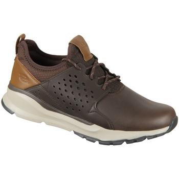 Zapatos Hombre Zapatillas bajas Skechers Hemson Marrón