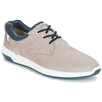Zapatos Hombre Zapatillas bajas Lloyd ACHILLES Beige