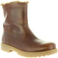 Zapatos Hombre Botas urbanas Panama Jack FEDRO C23 Marr?n