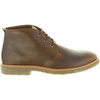 Zapatos Hombre Botas de caña baja Panama Jack GAEL C11 Marrón