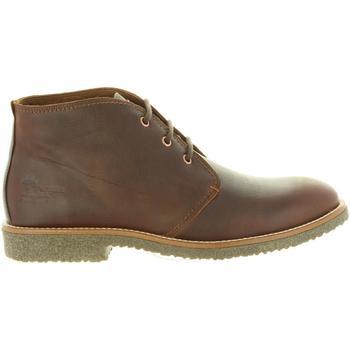 Zapatos Hombre Botas de caña baja Panama Jack GAEL C9 Marrón