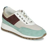 Zapatos Mujer Zapatillas bajas Geox D TABELYA Beige