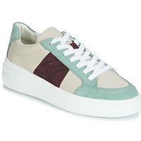 Zapatos Mujer Zapatillas bajas Geox D OTTAYA Crema / Verde