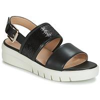 Zapatos Mujer Sandalias Geox D WIMBLEY SANDAL Negro