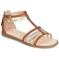 Zapatos Niña Sandalias Geox J SANDAL KARLY GIRL Camel / Oro