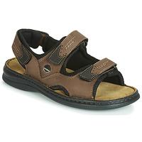 Zapatos Hombre Sandalias Josef Seibel FRANKLIN Marrón