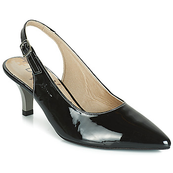 Zapatos Mujer Zapatos de tacón Dorking 7814 Negro