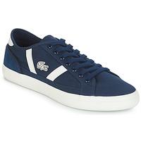 Zapatos Hombre Zapatillas bajas Lacoste SIDELINE 119 1 Marino / Blanco