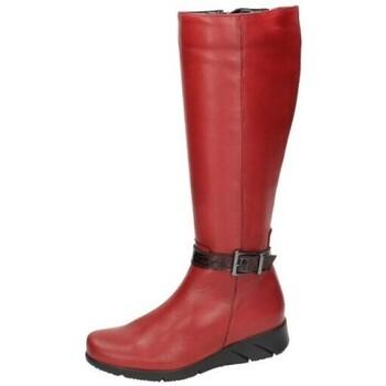 Zapatos Mujer Botas urbanas Moda Bella Botas de piel Rojo