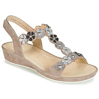Zapatos Mujer Sandalias Ara CAP-HS Marrón