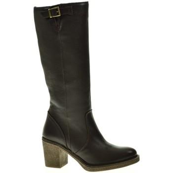 Zapatos Mujer Botas urbanas Linea Purpura 80536 Marrón