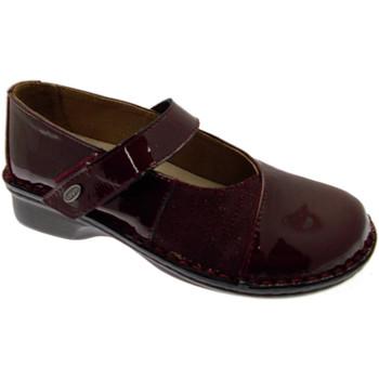 Zapatos Mujer Bailarinas-manoletinas Loren LOM2690bo tortora