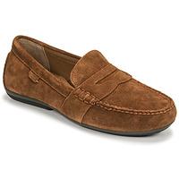 Zapatos Hombre Mocasín Polo Ralph Lauren REYNOLD Marrón