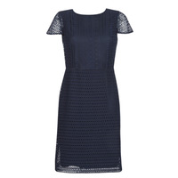 textil Mujer vestidos cortos Lauren Ralph Lauren NAVY SHORT SLEEVE DAY DRESS Marino