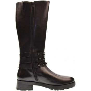 Zapatos Mujer Botas urbanas Apepazza  Otros