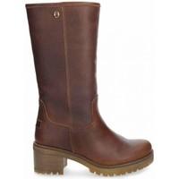 Zapatos Mujer Botas urbanas Panama Jack PATRICIA B16 marrón