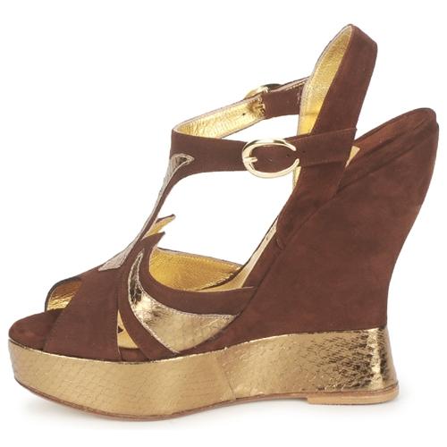 Los últimos zapatos de descuento para hombres y mujeres Zapatos especiales Terry de Havilland FARAH Chocolate