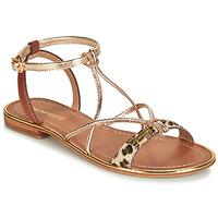 Zapatos Mujer Sandalias Les Tropéziennes par M Belarbi HIRONDEL Leopardo / Oro