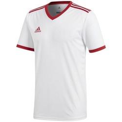 textil Hombre camisetas manga corta adidas Originals Tabela 18 Climalite Blanco