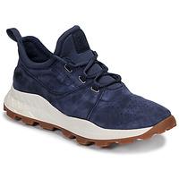 Zapatos Hombre Zapatillas bajas Timberland BROOKLYN LACE OXFORD Azul