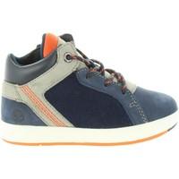 Zapatos Niño Botas de caña baja Timberland A1URG DAVIS Azul
