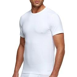 textil Hombre Camisetas manga corta Impetus 1353898 001 Blanco