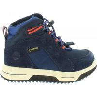 Zapatos Niños Botas de caña baja Timberland A1UD8 CITY Azul