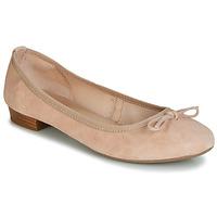 Zapatos Mujer Bailarinas-manoletinas André CINDY Nude