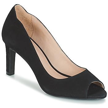 Zapatos Mujer Zapatos de tacón André CECILIA Negro